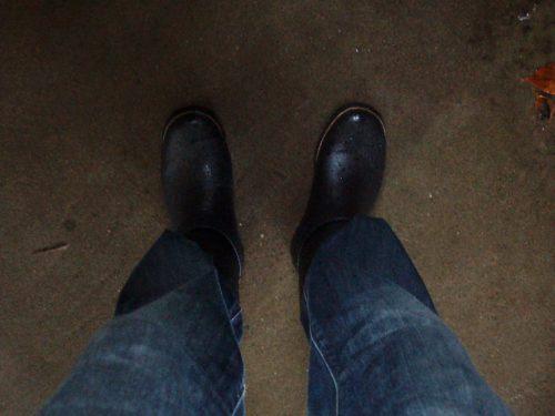 [ Phoenix Wing ] VRB666 (RO35) [ ショート フェニックス ウィング メンズ レイン ブーツ ] 長靴 エンジニアブーツ 選挙